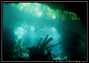 Picture taken with a Canon G9 in a Cenote (Yucatan). by Raoul Caprez 